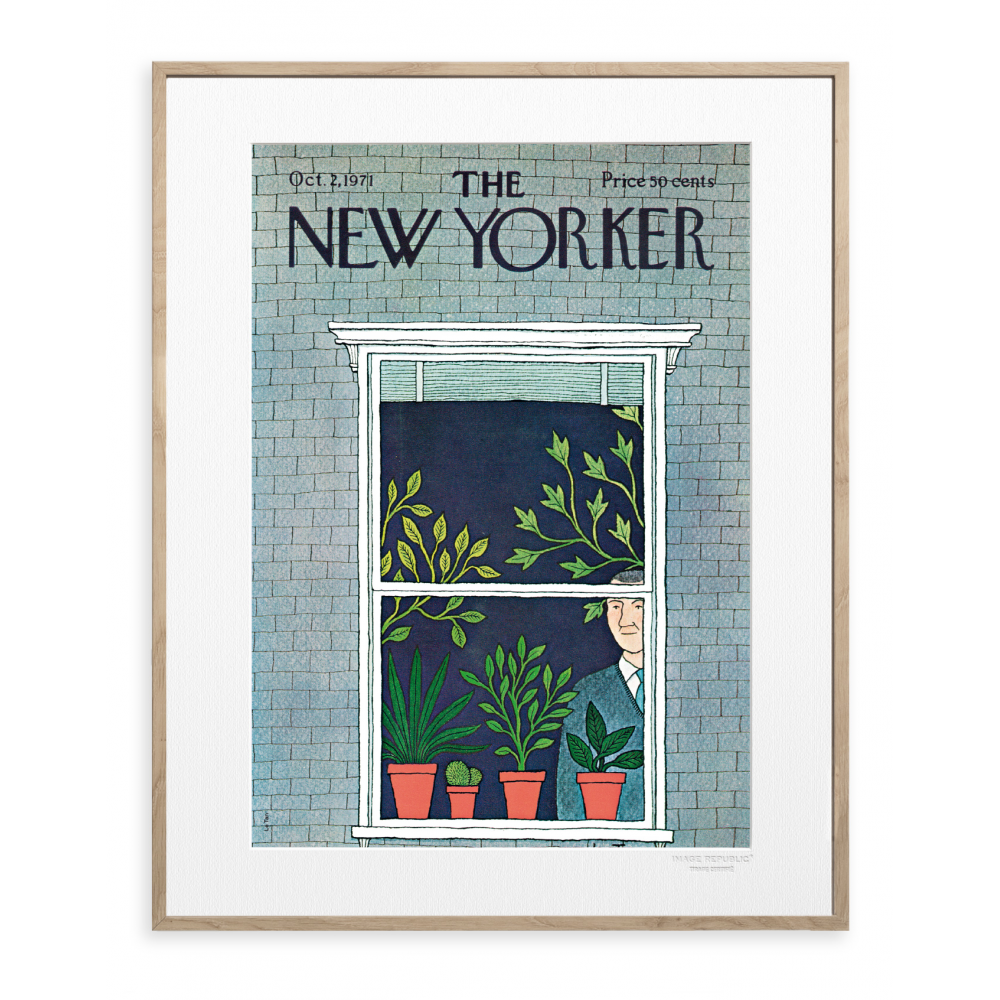 affiche the new yorker le tan man and potted plants. Black Bedroom Furniture Sets. Home Design Ideas